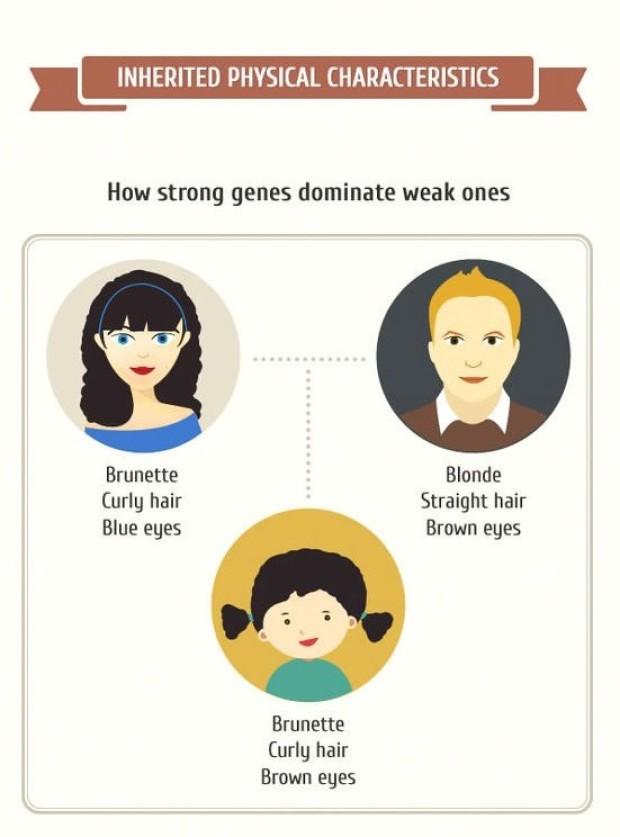 Domináns gének