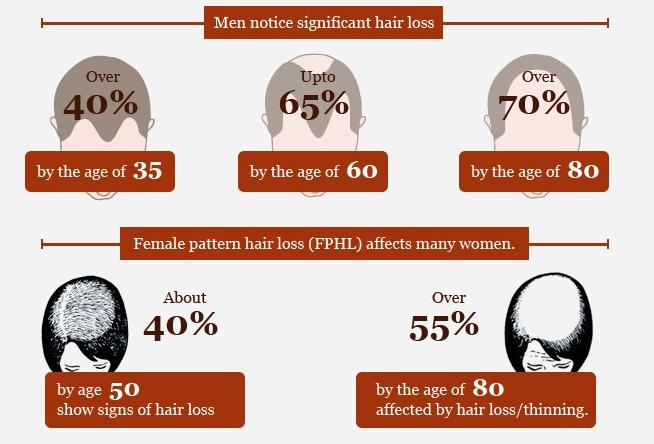 hajhullas_infografika