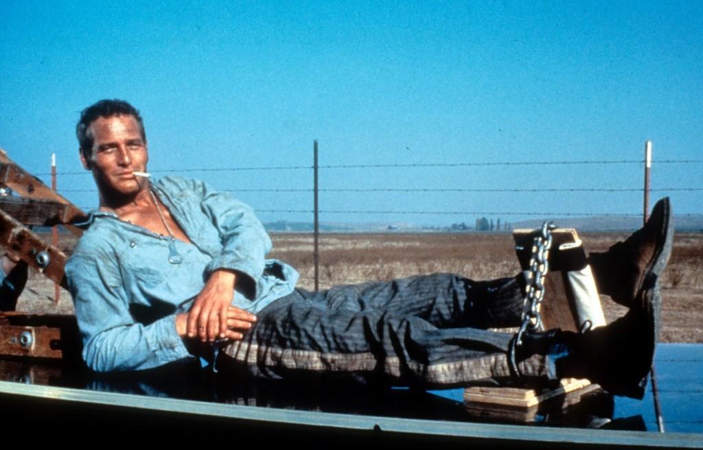 Paul Newman lazul.