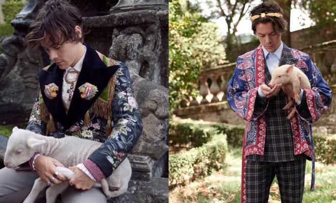 5a82921e45 Harry Styles és a Gucci új babérokra tör - beautyFY